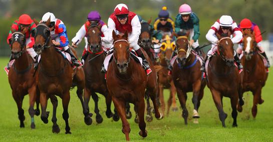 Horse-Betting